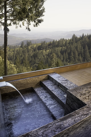 Napa Valley tub with view